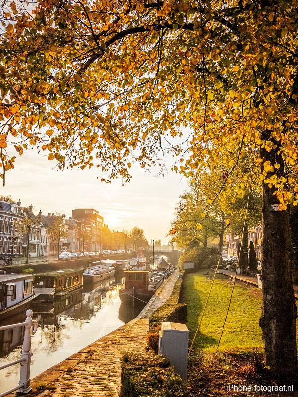 This autumn photo of a canal in Groningen was made with an iPhone. On the photo there are trees with yellow leaves.