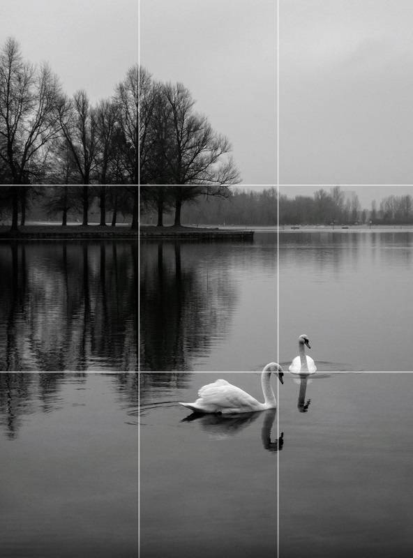 Composition tip the rule of thirds.