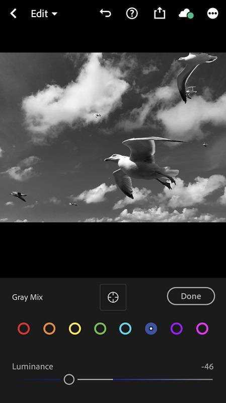 Gray values in Lightroom CC mobile
